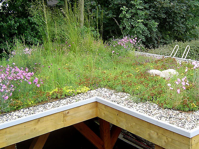 dachgarten dachbegr nung rostock. Black Bedroom Furniture Sets. Home Design Ideas